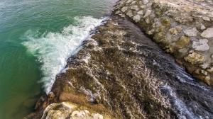 Dan reke Save, 1. junij