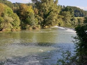 Zakaj se na vodi občasno pojavi pena?
