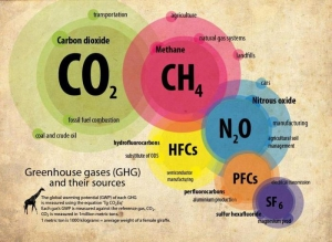 Toplogredni plini