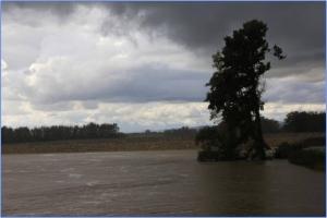 Vpliv HE na reko Savo in ...