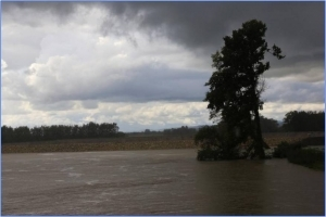 The influence of the HPP on the Sava and Krka river in view of the latest floods